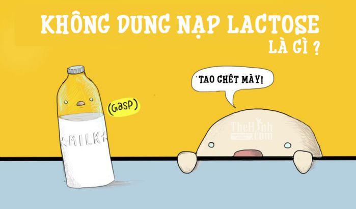 lactose là chất gì